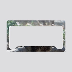 Sleeping Porcupine License Plate Holder