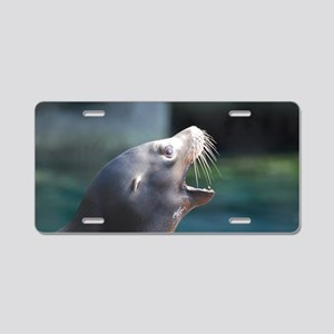 Sea Lion with His Mouth Ope Aluminum License Plate