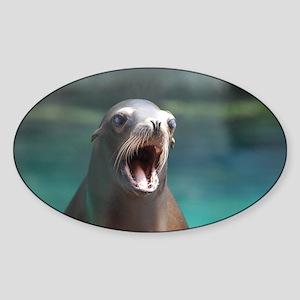 Roaring Sea Lion Sticker (Oval)
