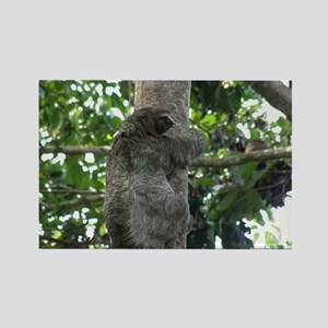 Climbing Sloth Rectangle Magnet