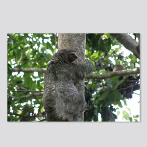 Climbing Sloth Postcards (Package of 8)
