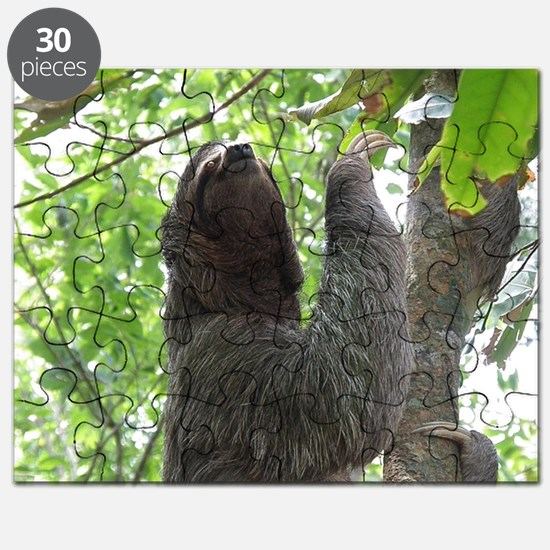 Tree Climbing Sloth Puzzle