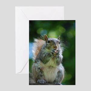 Friendly Squirrel Greeting Card