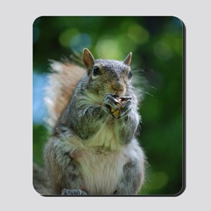 Friendly Squirrel Mousepad