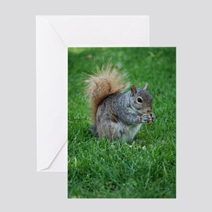 Squirrel in a Field Greeting Card