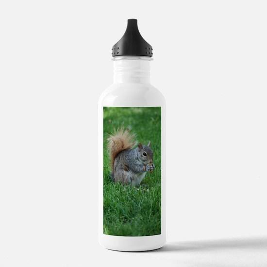 Squirrel in a Field Water Bottle
