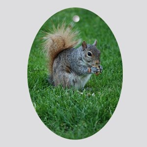 Squirrel in a Field Oval Ornament