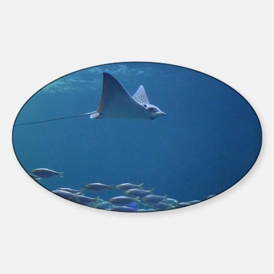 Stingray with Fish Sticker (Oval)