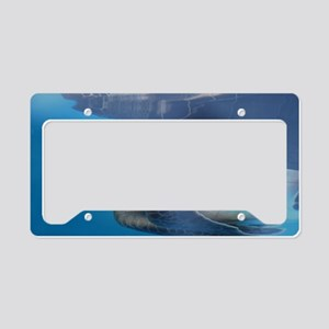Young Sea Turtle License Plate Holder