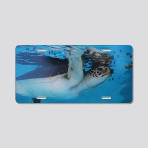 Sea Turtle Swim Aluminum License Plate