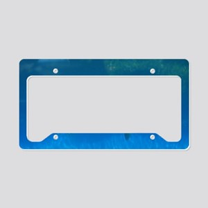Great Swimming Sea Turtle License Plate Holder