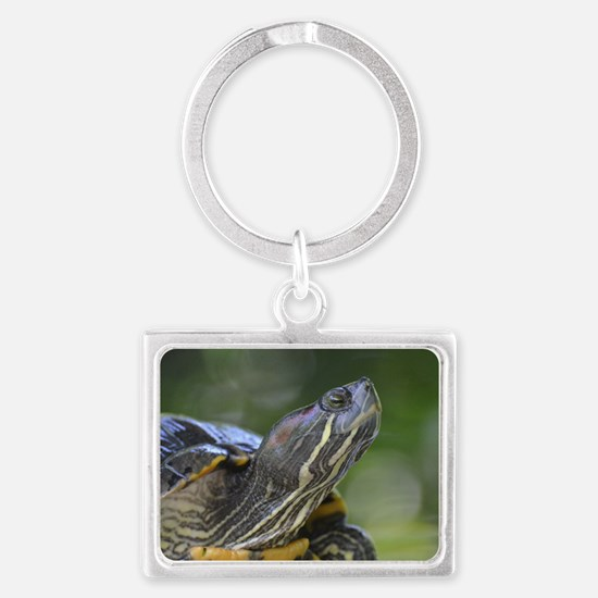 Painted Turtle on a Rock Landscape Keychain