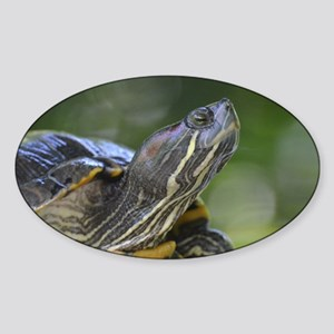 Painted Turtle on a Rock Sticker (Oval)