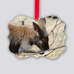 Adorable Wallaby Picture Ornament