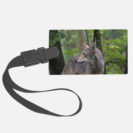 Wild Timber Wolf Luggage Tag