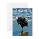 Keeshond Ballet Greeting Cards (Pk of 20)
