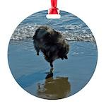 Keeshond Ballet Round Ornament