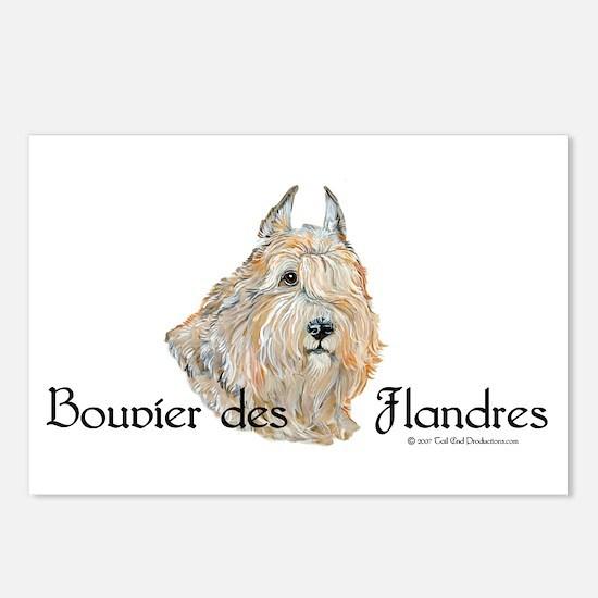 Bouvier Sweetie Postcards (Package of 8)