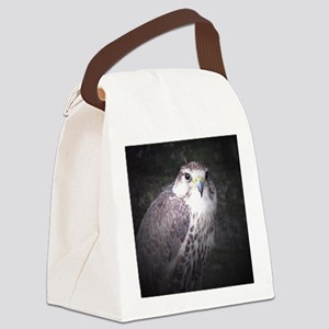 Falcon, Bird of Prey by Tom Conwa Canvas Lunch Bag