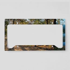 Sviati Hory National Park - D License Plate Holder