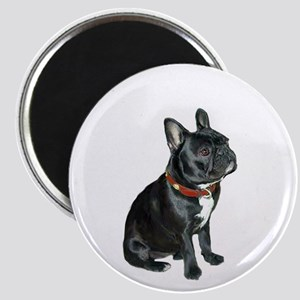 French Bulldog (blk2) Magnet Magnets