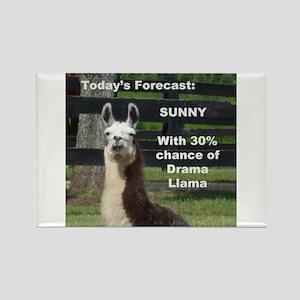 Drama Forecast Magnets