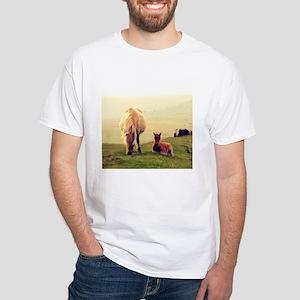 Dartmoor Pony Foal 1 T-Shirt