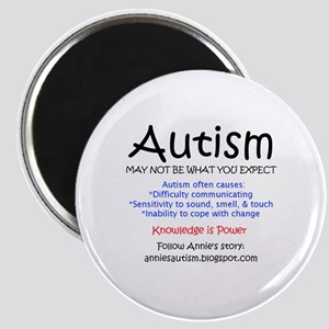 Autism - May not expect Magnet