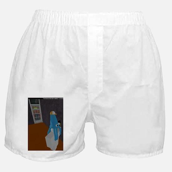 Test Boxer Shorts