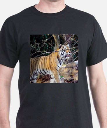 Tiger in the woods T-Shirt