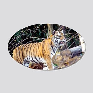 Tiger in the woods 20x12 Oval Wall Decal