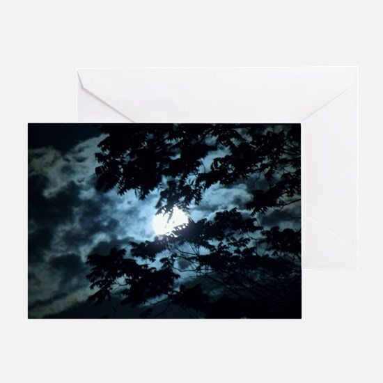Moon through the trees. Greeting Card