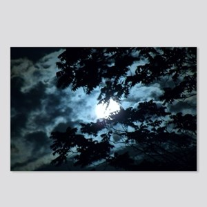 Moon through the trees. Postcards (Package of 8)