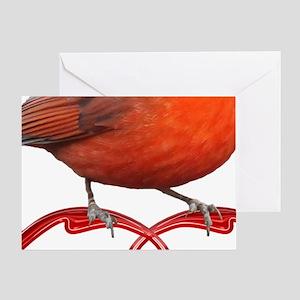Beautiful Cardinal Greeting Card