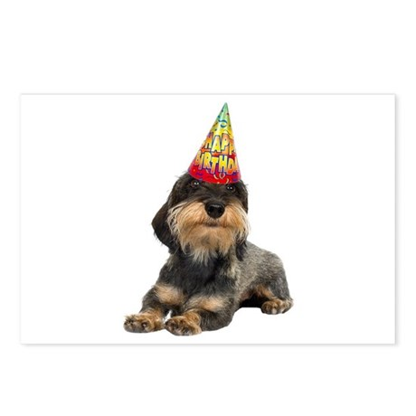 Wirehaired Dachshund Birt Postcards (Package of 8)
