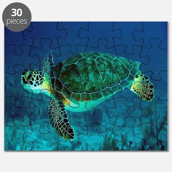 Ocean Turtle Puzzle