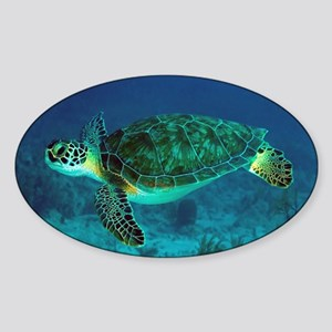 Ocean Turtle Sticker