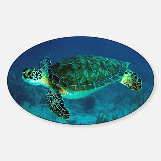 Ocean Turtle Stickers