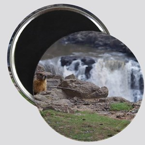 marmot and palouse falls Magnet