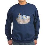 Baby Bird Sweatshirt (dark)