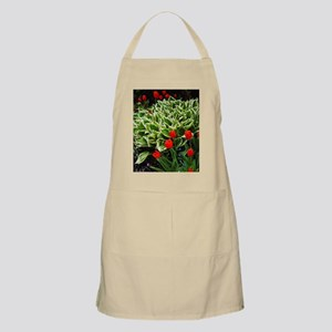 Red tulips and hosta plant  Apron