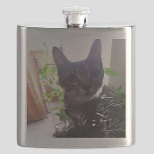 Wookie Prowling jungle cat Flask