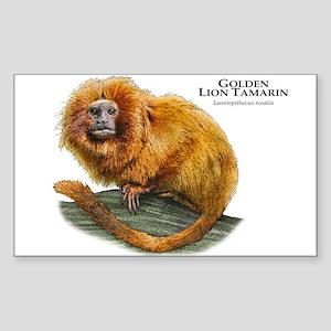 Golden Lion Tamarin Sticker (Rectangle)