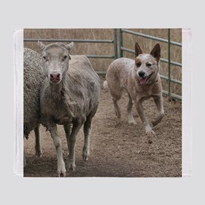 australian cattle dog herding Throw Blanket