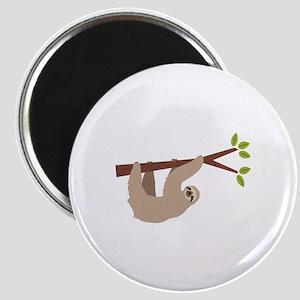 Sloth Magnets