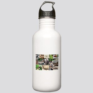 Lizard Types full Colo Stainless Water Bottle 1.0L