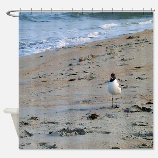 Seagull on Beach Shower Curtain