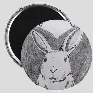Rabbit Rescue Adoption Magnets