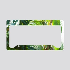Cultivated plants in a tropic License Plate Holder