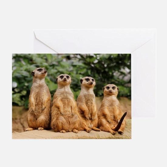 Meerkat-Quartett 001 Greeting Card